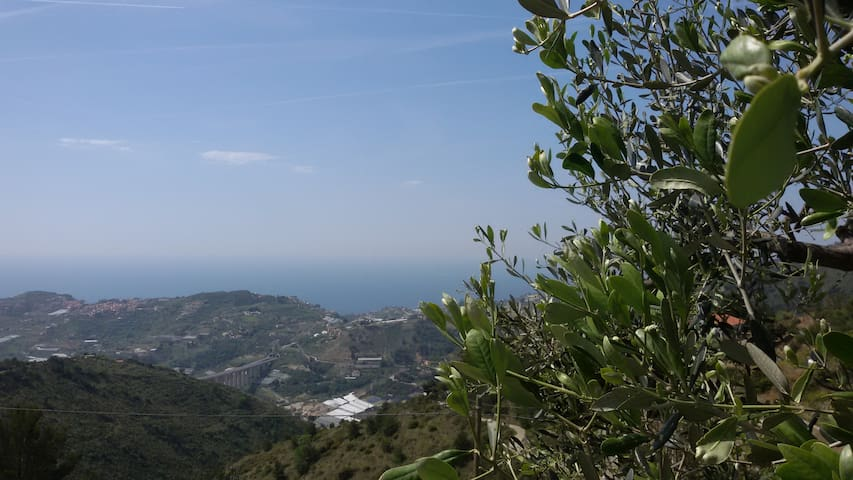 HILL & THE SEA - relaxation in nature - San Remo - Casa