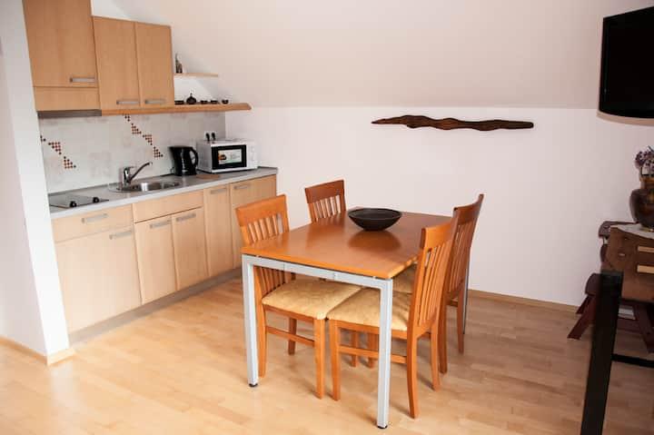 Guesthouse S Duplex 8 1-Bedroom Apartment Balcony
