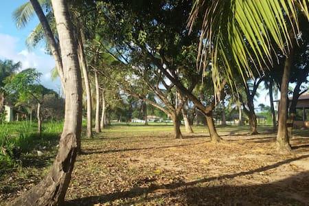 Área com 3.750m² toda arborizada.