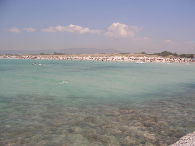 VADA (Costa livornese)450mt mare - Rosignano marittimo - Departamento