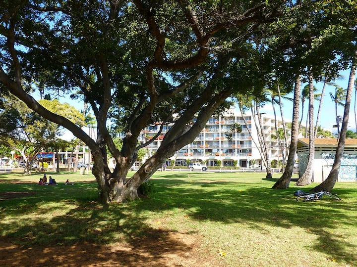 Clean Affordable Great Location Walk to Beach