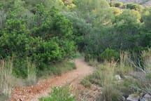 The Area - walk or cycle through the Montgo Natural Park