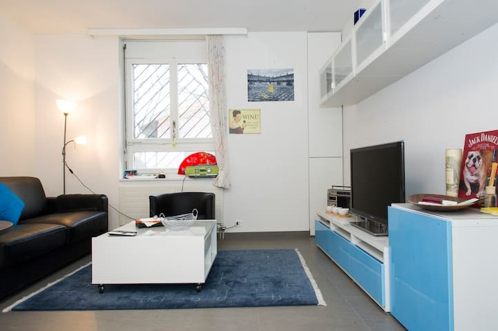 Furnished renovated apartment in Zurich City - Zurych - Apartament