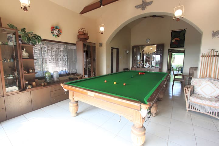 Billiards / Snooker in the Game Room