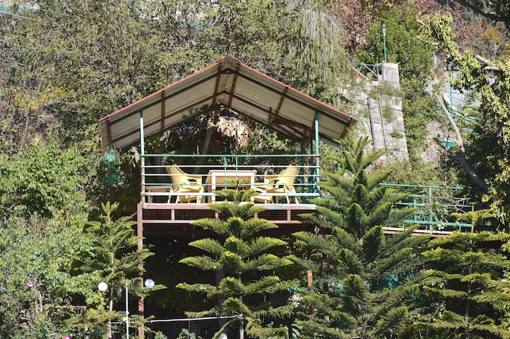 La Pinekonez Kussowlie  AN ECO HOMESTAY - Kasauli - House