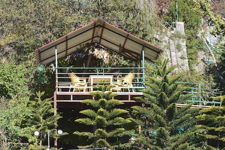 La Pinekonez Kussowlie HOMESTAY - Kasauli