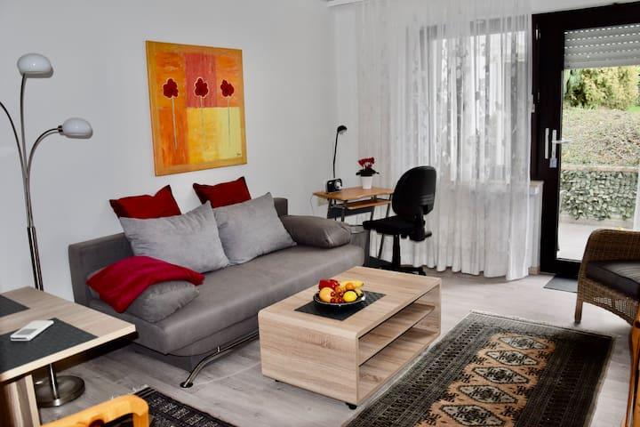 Renovierte, moderne 2-Zimmer-Wohnung mitTerrasse