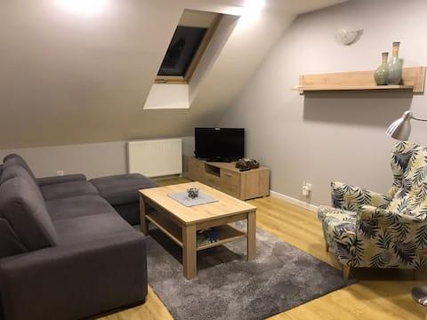 Apartament Mickiewicza 78