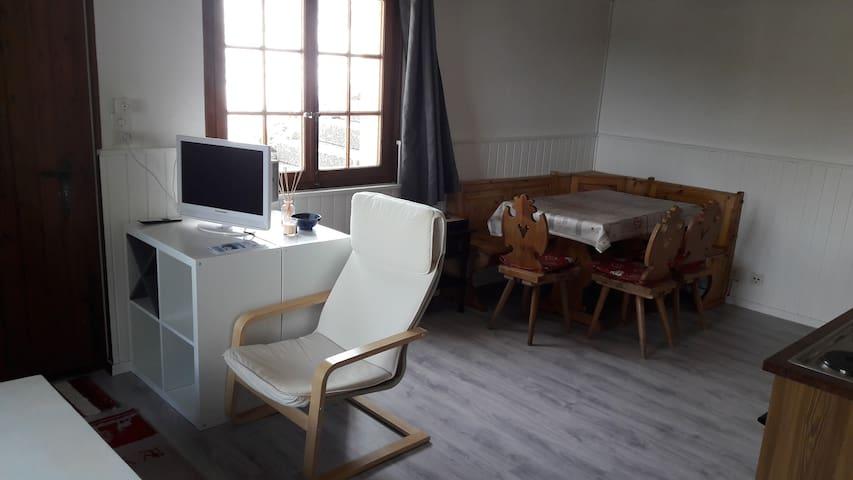 Studio indépendant aux Rosalys - Châtel-Saint-Denis - Wohnung