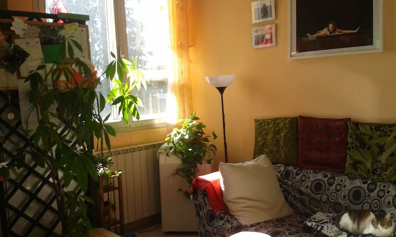 SINGLE BEDROOM - Prato - Pis