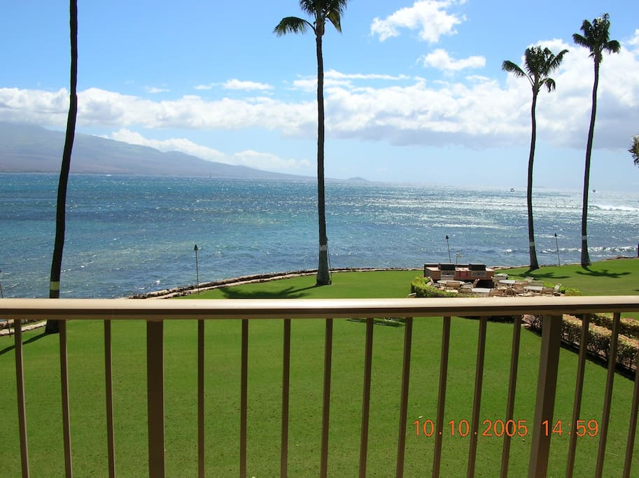 Watch the whales from Condo Lanai