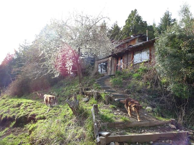 Mountain WoodHouse