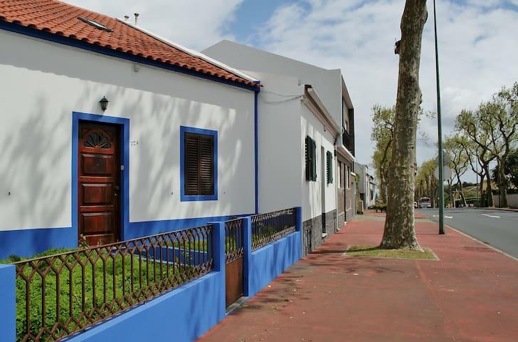 Azul Natura House