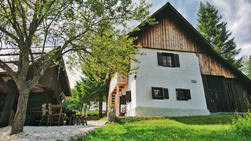 Alpine House 1100