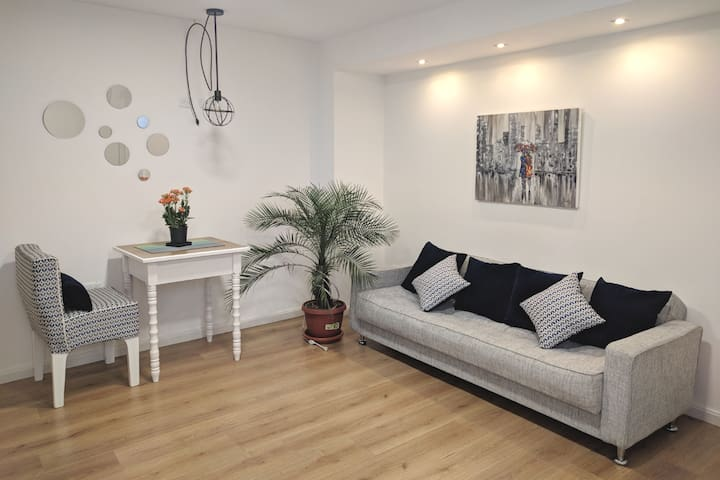 Beautiful SUITE 300meters from train station.