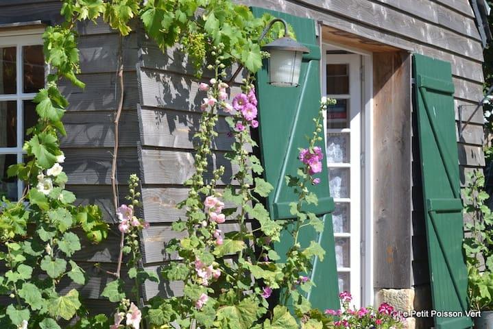 Cosy eco-friendly cottage near sea
