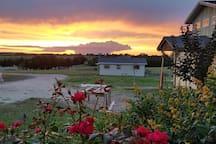 Camelia Farm Burton Little House