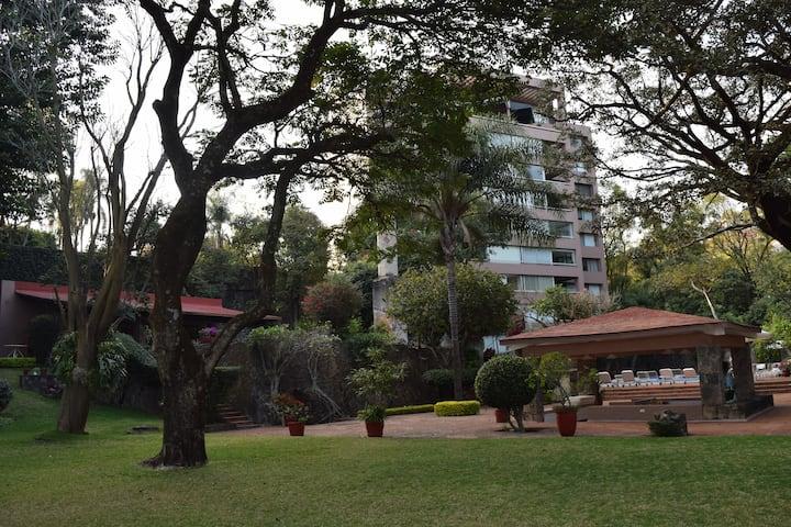 Rincón de Paz