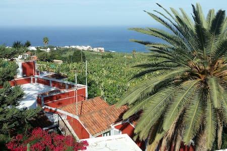 Rundumsorglospaket für die Frau - Puerto de la Cruz - Bed & Breakfast