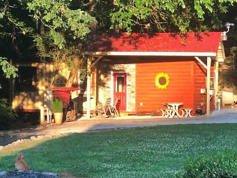 Holliday's Inn Tiny Tree-house