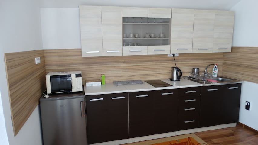 Fully equipped kitchen with a fridge with shelf freezer, an induction stove (2 plates), kettle and a microwave oven.