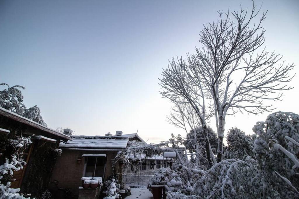 Snowfall, February 2018