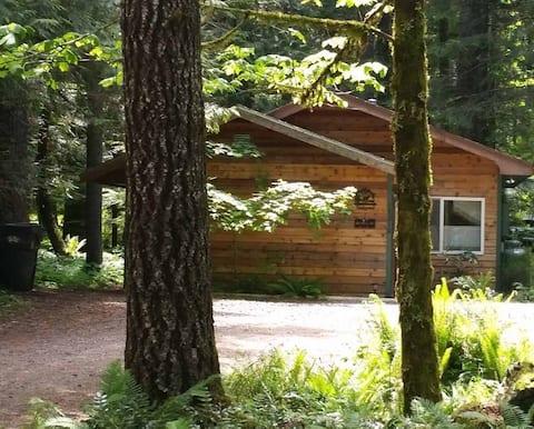 Vine Maple House, Hot Tub,Sleeps 2-4, Pet Friendly