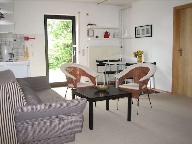 Wohnraum/Küchenzeile
