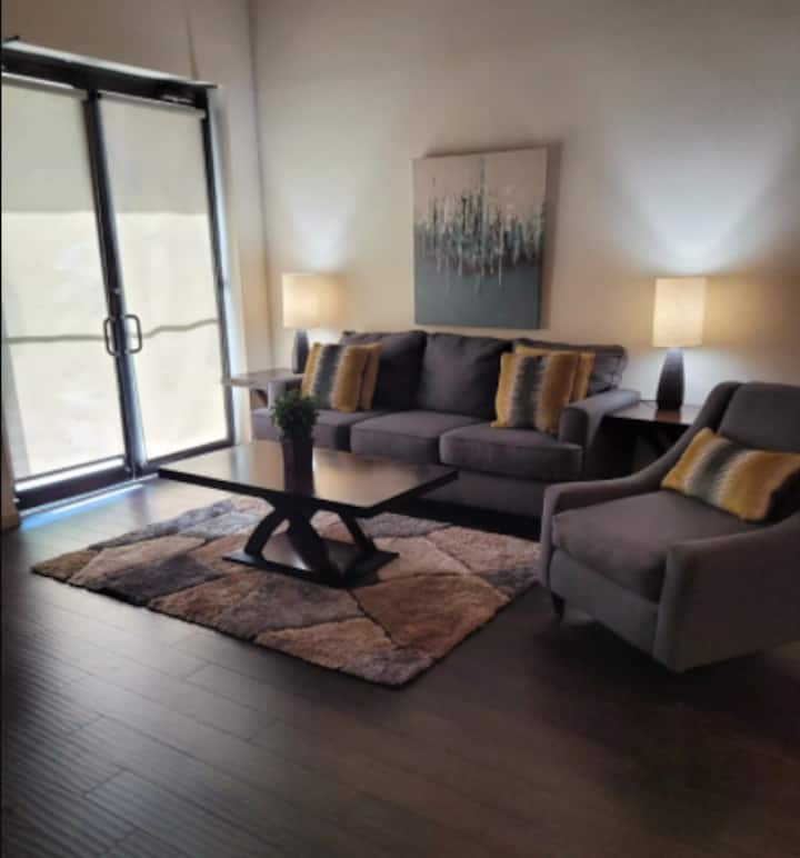 Luxury Loft 1 bedroom apartment in San Antonio
