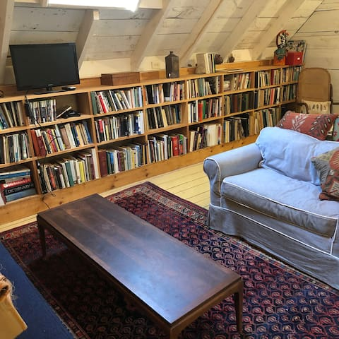 library- skylights, cozy seating, optional sleeping space, desk,  lots of books!