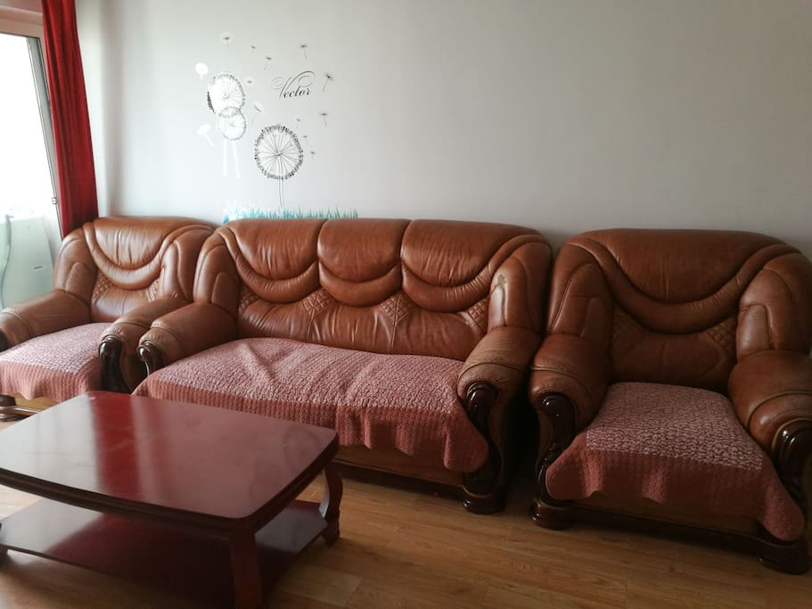 舒适的皮质沙发