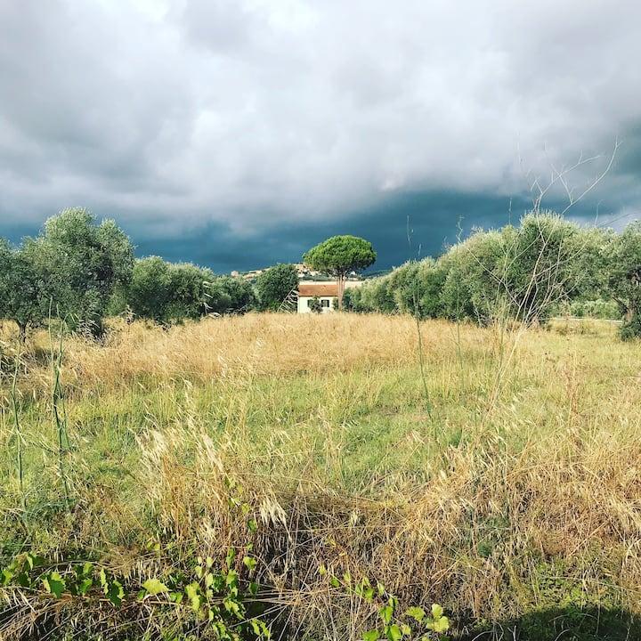 Alta Maremma country&sea