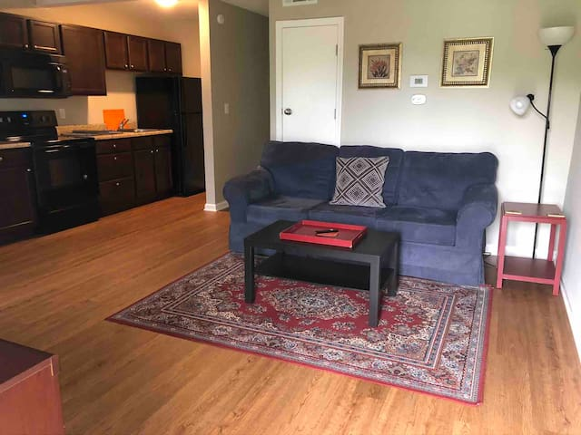 Wonderful 1 bed/1bath apt. in Central Columbia.