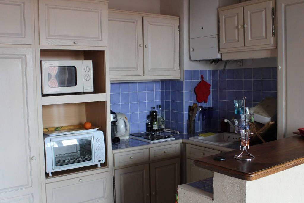 Cuisine américaine ou verte sur le salon - équipée : frigo, congélateur, four, micro-onde