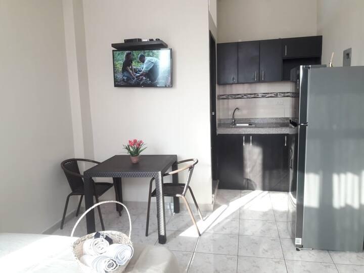 Elegante B1 Suite estudio Riocentro Norte Alborada