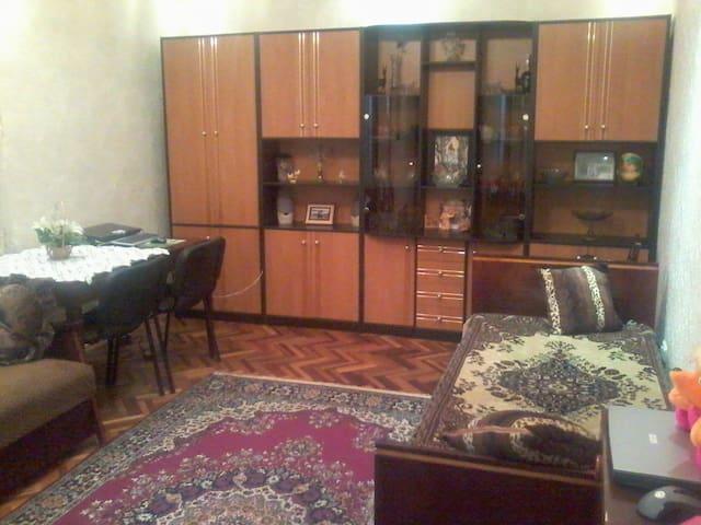Комната в живописном районе и метро - Киев - Квартира