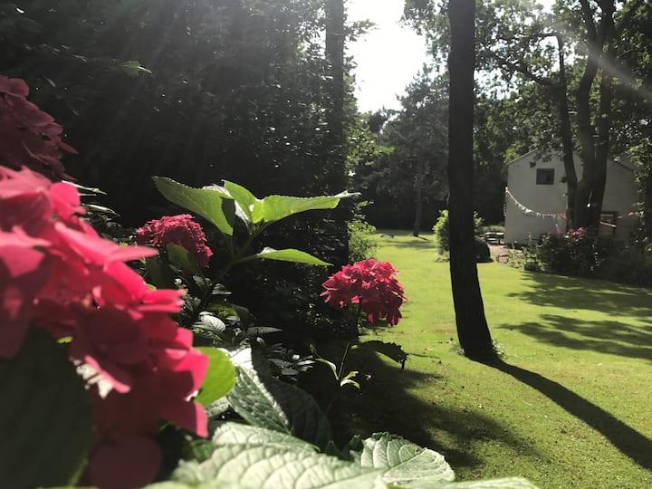Detached Villa w. HUGE garden near Amsterdam BEACH