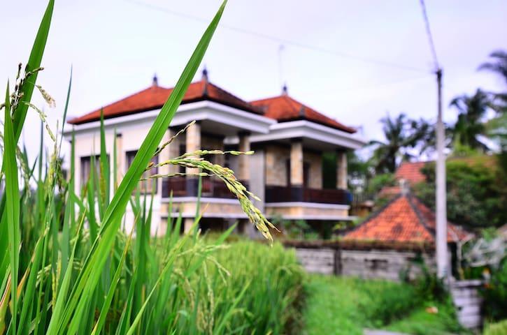 Ban Chang - Gianyar  - House