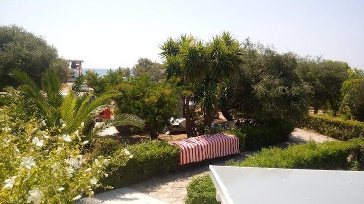 Cozy summer house by the sea @Karavostasi Perdika