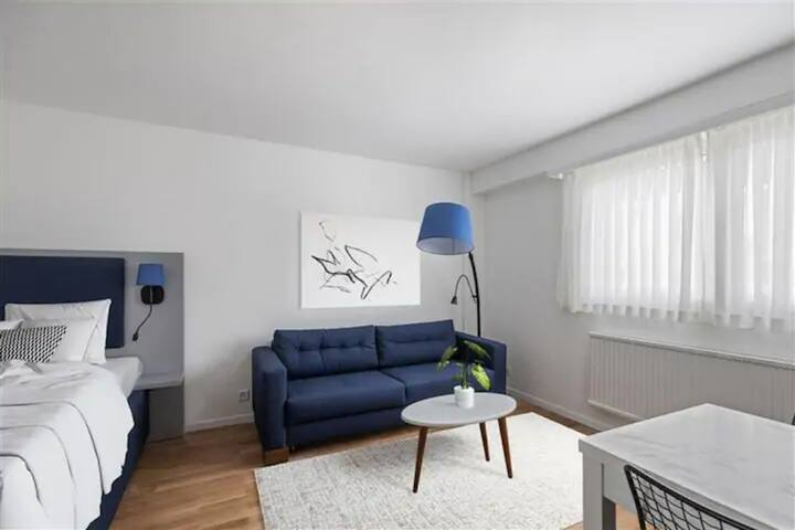 Furnished Deluxe Studio in Lausanne