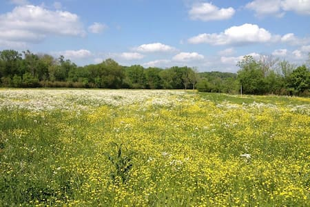 Hayshed Farms on Big Turnbull Creek Glamping - Kingston Springs - Tenda de campanya