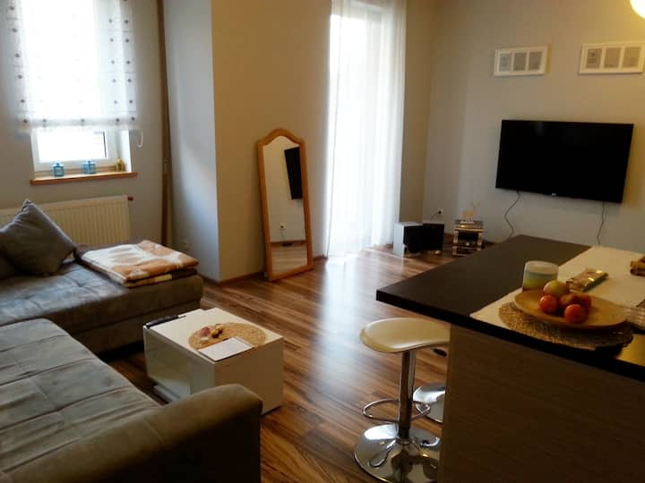 Apartment with garage near airport with WIFI