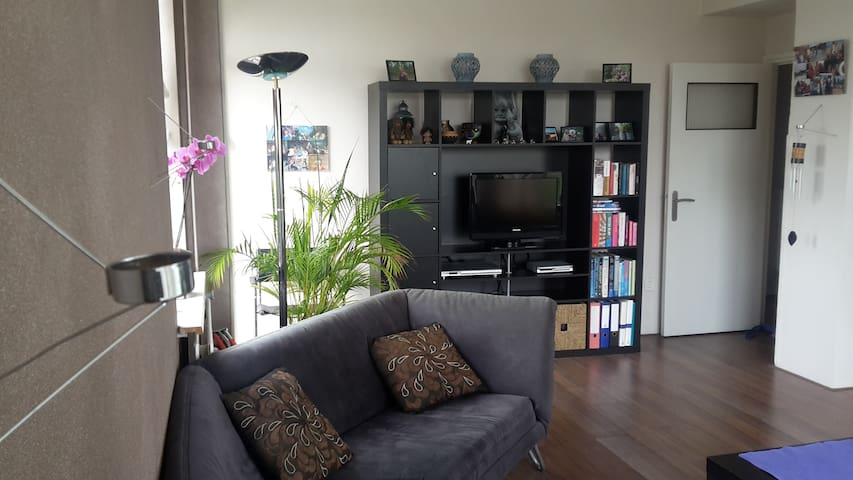 Light & spacious apartment in Amsterdam - Амстердам - Квартира
