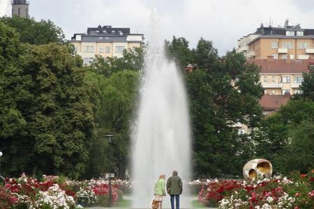 Beautiful flat in central Sthlm - Estocolmo