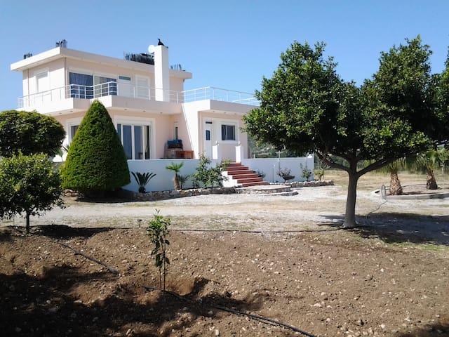 House Maia