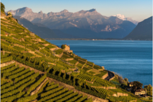 private parking and immediate access to the beach is just one of the many comforts this beautiful home has to offer. On your spare time, bike, run, walk or simply admire the terraces of Lavaux accessible directly behind the apartment.