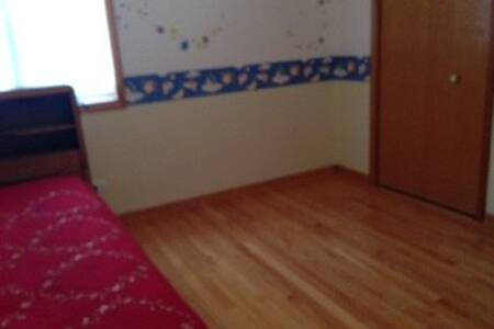 Spacious and Beautiful Bed room - 네이퍼빌(Naperville)