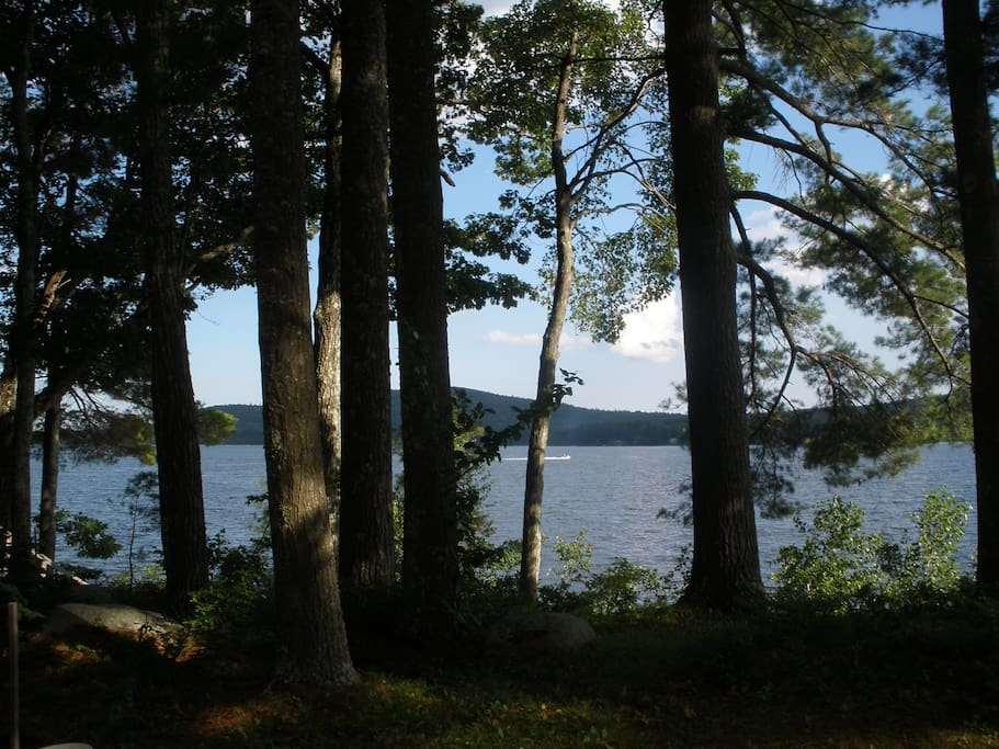 One of the choicest spots on the lake in one of the first settled areas of Province Lake,