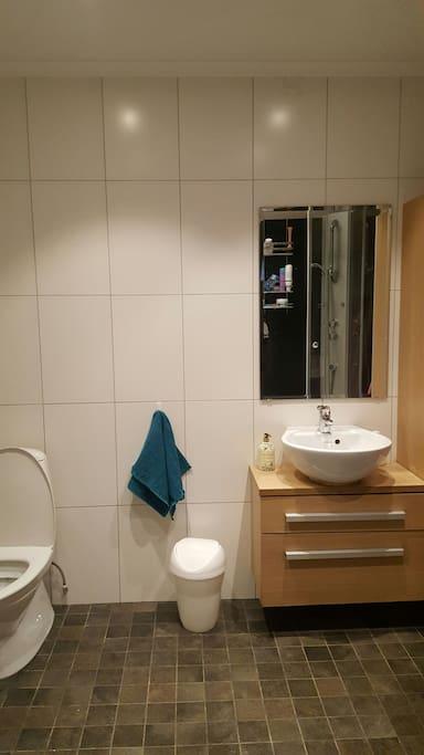 Bathroom built in 2011