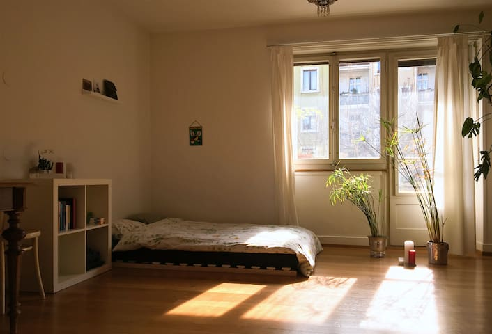 Large Sunny Room with Terrace - Basileia - Apartamento